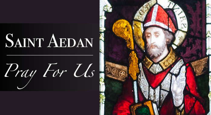 Saint Aedan of Ferns
