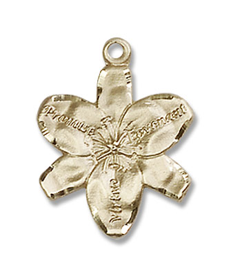 Chastity Promise Medal - 14K Yellow Gold