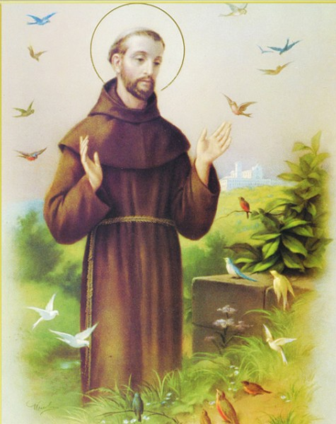 St. Francis Large Poster - Multi-Color