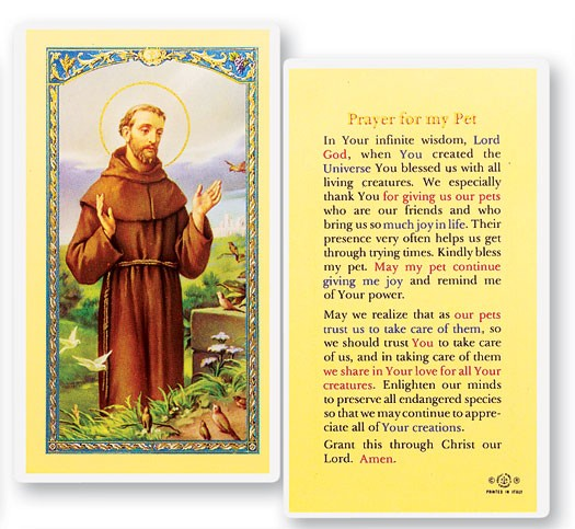 Prayer For My Pet, St  Francis Laminated Prayer Cards 25 Pack