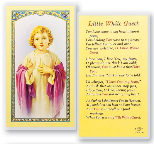 Little White Guest Christ Child Laminated Prayer Cards 25 Pack - Full Color