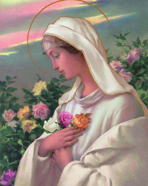 Mystical Rose Madonna Print - Sold in 3 per pack - Multi-Color