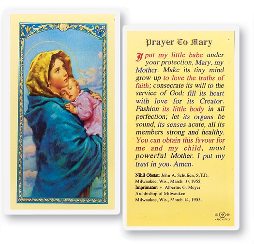 Prayer To Mary Madonna of the Street Laminated Prayer Cards 25 Pack - Full Color