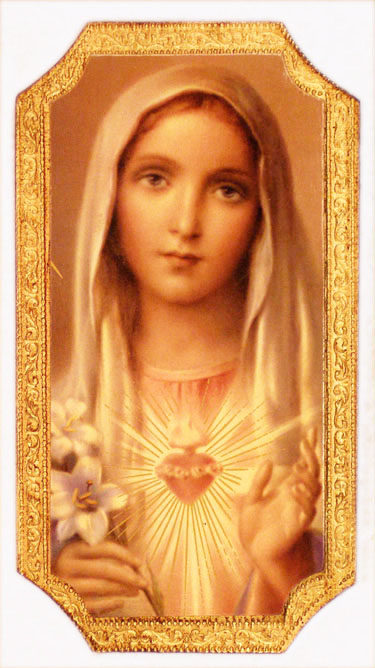 Immaculate Heart of Mary Plaque 9 Inches - Multi-Color
