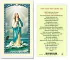 Our Lady Star of The Sea Laminated Prayer Cards 25 Pack
