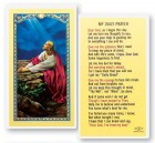 My Daily Laminated Prayer Cards 25 Pack