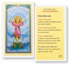 Divino Nino Para Serenidad Laminated Spanish Prayer Cards 25 Pack