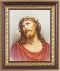 Christ Head of Thorns Framed Print