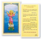 Divino Nino Novena Confianza Laminated Spanish Prayer Cards 25 Pack