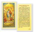 Oracion A La Madre Sma.De Luz Laminated Spanish Prayer Cards 25 Pack