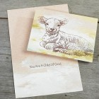Little Lamb Child of God Card - Full Color