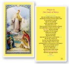 Our Lady of Mercy Laminated Laminated Prayer Cards 25 Pack