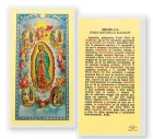 A Nuestra Senora De Guadalupe Con Visiones Laminated Spanish Prayer Cards 25 Pack