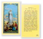 Novena A Nuestra Senora De Fatima Laminated Spanish Prayer Cards 25 Pack