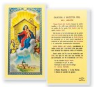 Oracion A Nuestra Senora Loreto Laminated Spanish Prayer Cards 25 Pack
