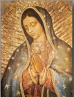 Our Lady of Guadalupe Large Poster