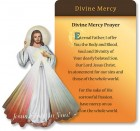 Divine Mercy Inspirational Magnet with Prayer Card