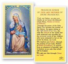 Our Lady of Divine Providence Laminated Prayer Cards 25 Pack