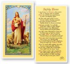 Safely Home Good Shepherd Laminated Prayer Cards 25 Pack