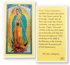 Our Lady of The Guadalupe Laminated Prayer Cards 25 Pack