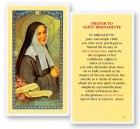 Prayer To St. Bernadette Laminated Prayer Cards 25 Pack