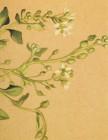 RCIA or Confirmation Alpine Flower Card