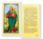 Ofrecimiento Maria Auxiliadora Laminated Spanish Prayer Cards 25 Pack