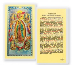 A Nuestra Senora De Guadalupe Con Visiones Laminated Spanish Prayer Cards 25 Pack [HPRS222]