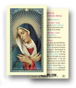 Chaplet of Our Lady of Divine Laminated Prayer Cards 25 Pack [HPR945]