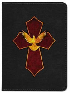 Cross and Dove Catholic Bible [NGB007]