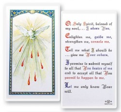 Holy Spirit Laminated Prayer Cards 25 Pack [HPR651]