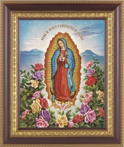 Our Lady of Guadalupe Framed Print [HFP218]