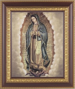 Our Lady of Guadalupe Framed Print [HFP895]