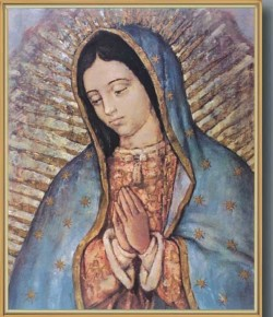 Our Lady of Guadalupe Gold Framed Print [HFA0196]