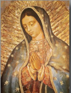 Our Lady of Guadalupe Large Poster [HFA0371]