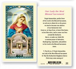 Our Lady of The Blessed Laminated Prayer Cards 25 Pack [HPR901]