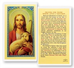 Prayer For Whose Lives I Touch Laminated Prayer Cards 25 Pack [HPR738]