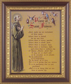 Prayer of St. Francis Framed Print [HFP311]