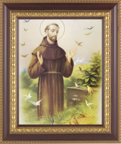 St. Francis of Assisi Framed Print [HFP310]