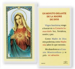 Un Minuto Delante Madre Dios Laminated Spanish Prayer Cards 25 Pack [HPRS201]