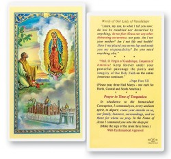 Words of Our Lady of Guadalupe Laminated Prayer Cards 25 Pack [HPR843]
