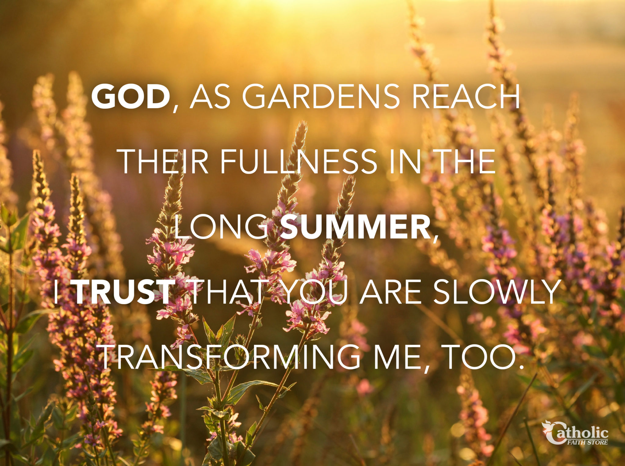 Summer Gardens Trust in God
