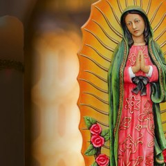 The Grand Conversion Story – Our Lady of Guadalupe December 12th
