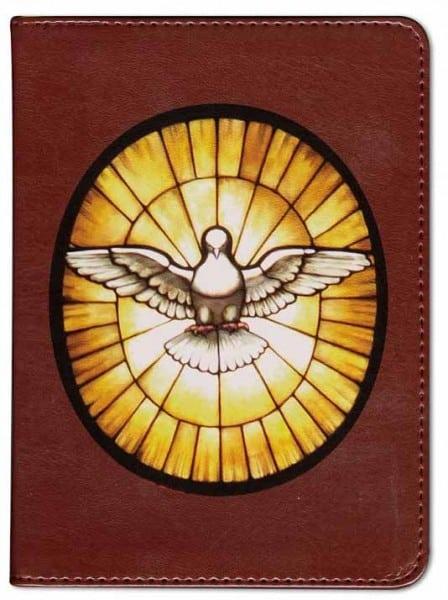 Holy Spirit Bible