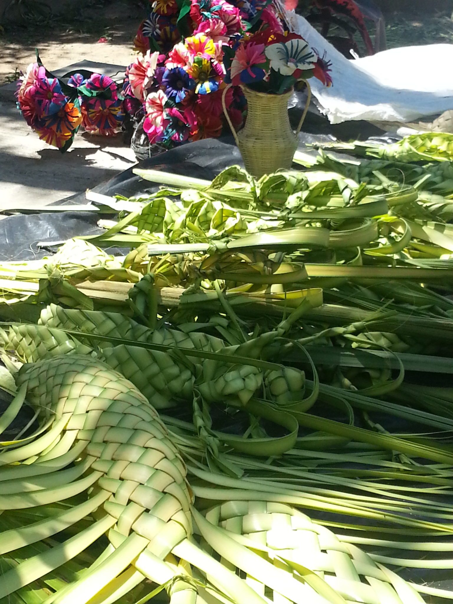 Palm_Sunday_in_Nayarit_Mexico