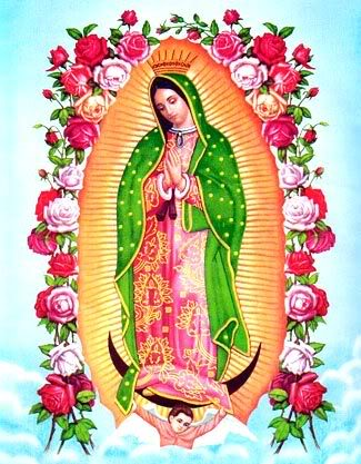 The Story of Our Lady of Guadalupe | Catholic Faith Store
